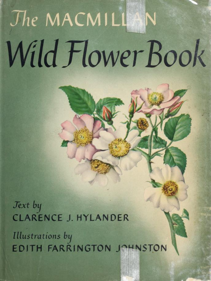 MacMillan Wildflower Book by Clarence J. Hylander